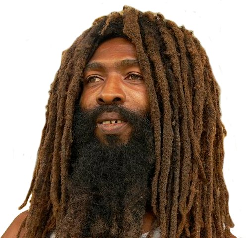 Rastas Dreadlocks Natty Dread