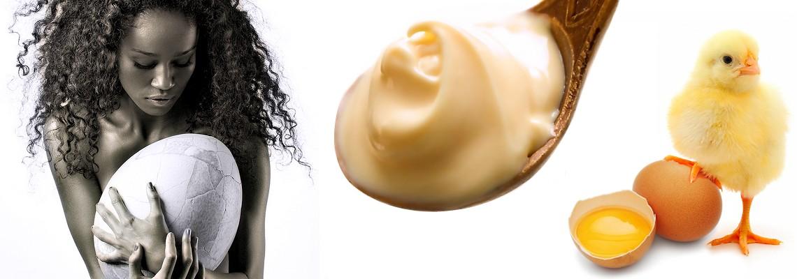 oeuf et huile d 39 oeuf soin masque pour cheveux adjocom. Black Bedroom Furniture Sets. Home Design Ideas