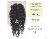 """Closure Lace Top Water Deep - Cheveux Naturels Remy - Janet Collection - 14"""", 20 grammes"""